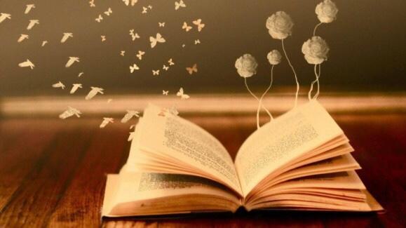 Tôi học được gì sau một kỳhọc…đọc!